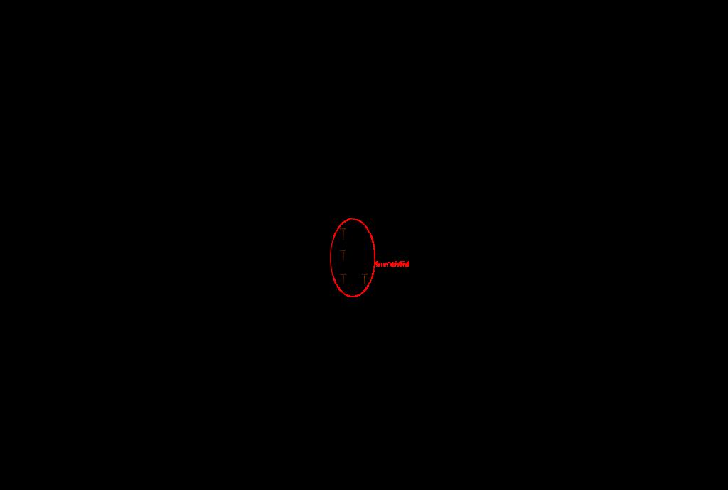 survay_fiber_optic